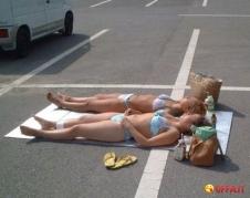 parking-lot-sunbathers-Ol4y